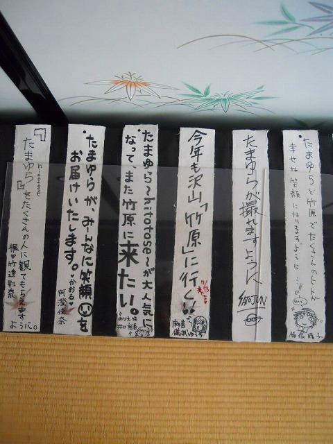 f:id:kabutoyama-tigers:20120214161917j:image