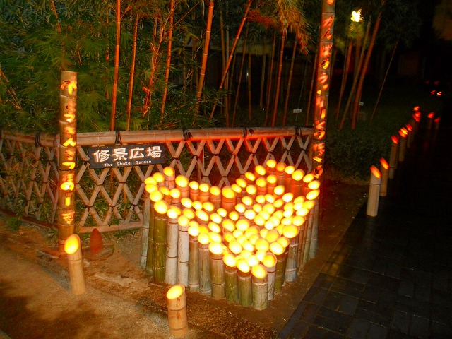 f:id:kabutoyama-tigers:20120214163824j:image