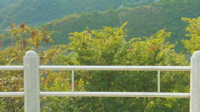 f:id:kabutoyama-tigers:20120222062205j:image