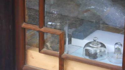 f:id:kabutoyama-tigers:20120227142118j:image