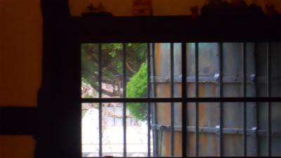 f:id:kabutoyama-tigers:20120313085441j:image
