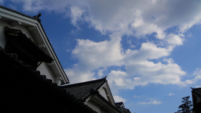 f:id:kabutoyama-tigers:20120313095424j:image