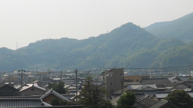 f:id:kabutoyama-tigers:20120313110248j:image