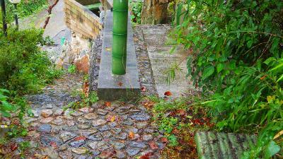 f:id:kabutoyama-tigers:20120313175316j:image
