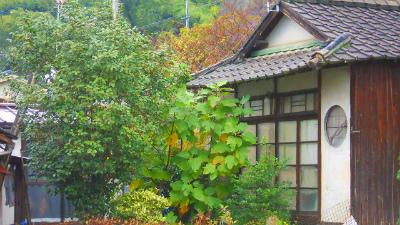 f:id:kabutoyama-tigers:20120313182326j:image