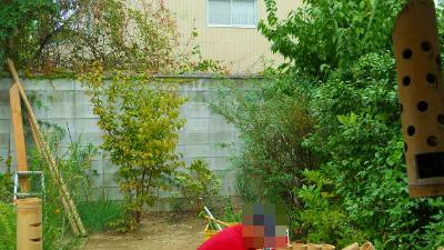 f:id:kabutoyama-tigers:20120318142858j:image