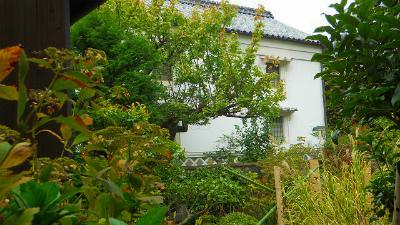 f:id:kabutoyama-tigers:20120318143429j:image