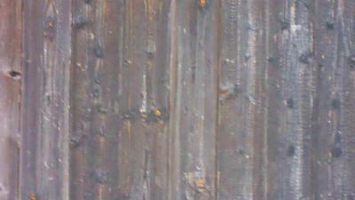f:id:kabutoyama-tigers:20120320112739j:image