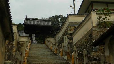 f:id:kabutoyama-tigers:20120320132314j:image