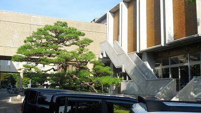 f:id:kabutoyama-tigers:20120325043628j:image