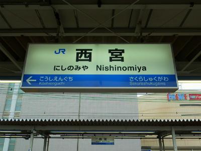 f:id:kabutoyama-tigers:20120328143001j:image