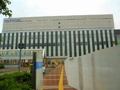 f:id:kabutoyama-tigers:20120328165655j:image