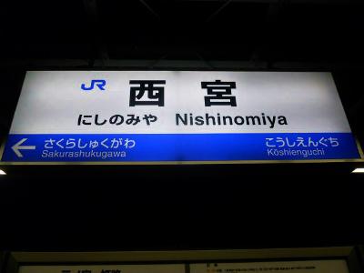 f:id:kabutoyama-tigers:20120328170547j:image