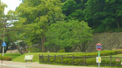 f:id:kabutoyama-tigers:20120403122704j:image