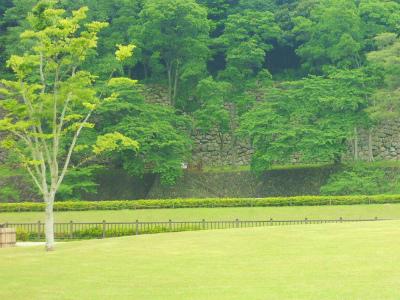 f:id:kabutoyama-tigers:20120403122708j:image