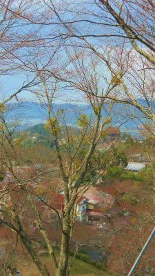 f:id:kabutoyama-tigers:20120419194805j:image