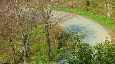 f:id:kabutoyama-tigers:20120419195316j:image