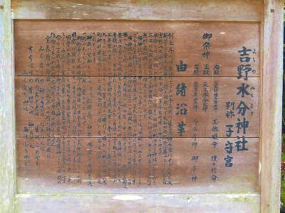f:id:kabutoyama-tigers:20120419200731j:image