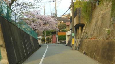 f:id:kabutoyama-tigers:20120424184726j:image