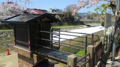 f:id:kabutoyama-tigers:20120430212315j:image
