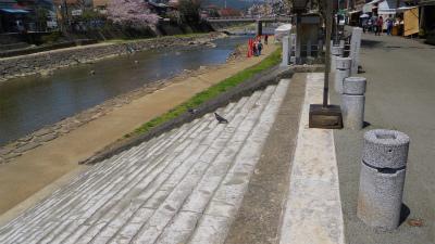 f:id:kabutoyama-tigers:20120430212649j:image