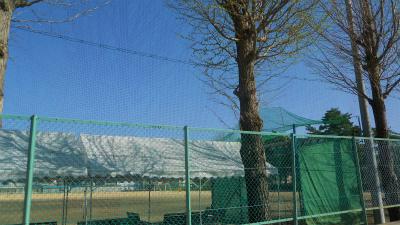 f:id:kabutoyama-tigers:20120501191920j:image