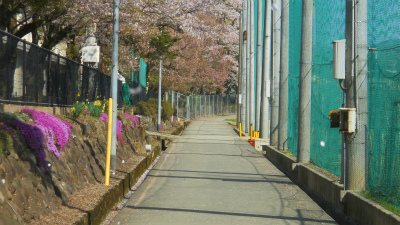 f:id:kabutoyama-tigers:20120501192902j:image