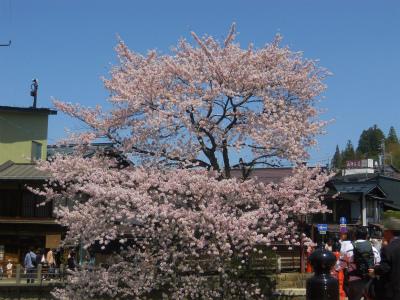 f:id:kabutoyama-tigers:20120502193858j:image