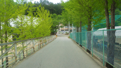 f:id:kabutoyama-tigers:20120523143013j:image