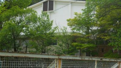 f:id:kabutoyama-tigers:20120523143523j:image