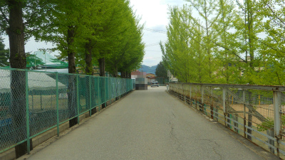 f:id:kabutoyama-tigers:20120523145050j:image