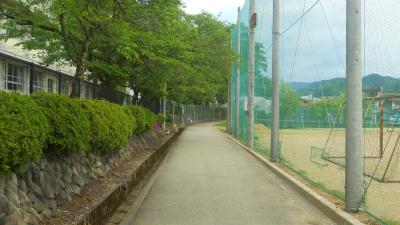 f:id:kabutoyama-tigers:20120523205211j:image