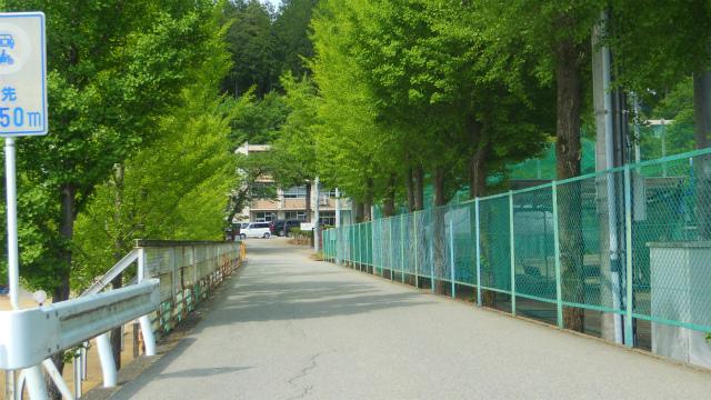 f:id:kabutoyama-tigers:20120618204106j:image