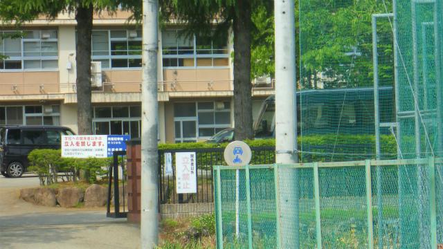 f:id:kabutoyama-tigers:20120619134857j:image