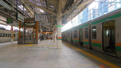 f:id:kabutoyama-tigers:20120712121305j:image