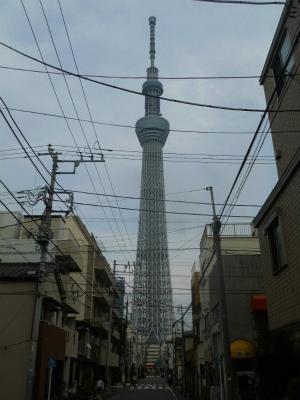 f:id:kabutoyama-tigers:20120712140442j:image