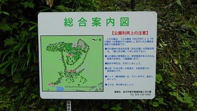 f:id:kabutoyama-tigers:20120718190403j:image