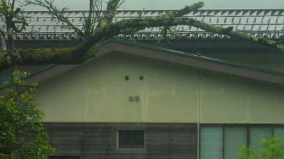 f:id:kabutoyama-tigers:20120723180210j:image