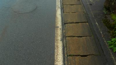 f:id:kabutoyama-tigers:20120723183909j:image