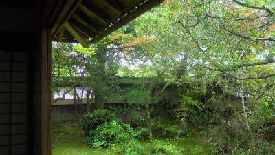 f:id:kabutoyama-tigers:20120804092041j:image