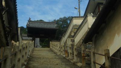 f:id:kabutoyama-tigers:20120822180910j:image