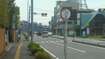 f:id:kabutoyama-tigers:20120822184610j:image