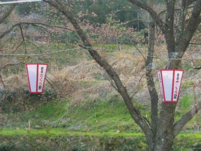 f:id:kabutoyama-tigers:20120829180652j:image