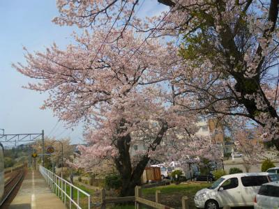 f:id:kabutoyama-tigers:20120910201640j:image