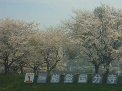 f:id:kabutoyama-tigers:20120910201642j:image
