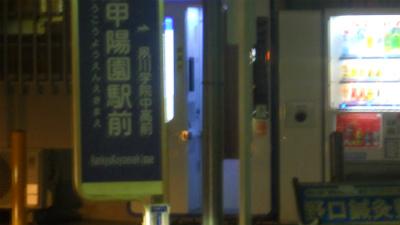 f:id:kabutoyama-tigers:20120912171746j:image