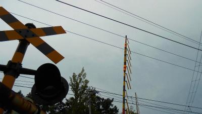 f:id:kabutoyama-tigers:20121016134851j:image