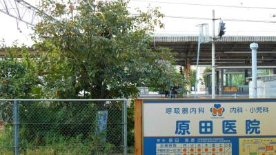 f:id:kabutoyama-tigers:20121024142551j:image