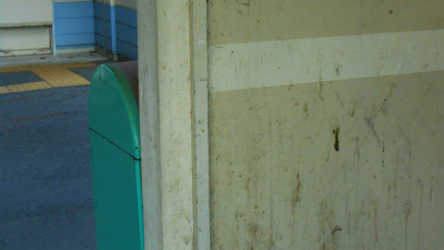 f:id:kabutoyama-tigers:20121024143947j:image