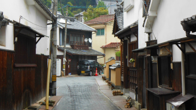f:id:kabutoyama-tigers:20121030120512j:image